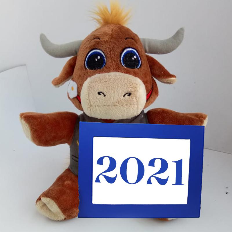MCS-Augustin.de Neujahr 2021